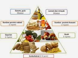 Makanan sehat yaitu