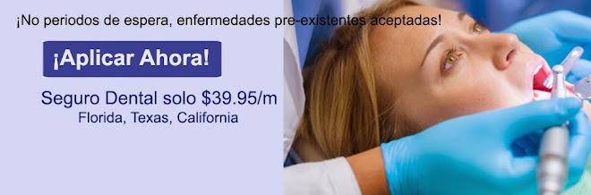 Seguro Dental Económico en Texas, California y Florida sin Costos Ocultos y Mejores Beneficios.....