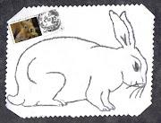 conejo. dibuje este conejo , el otro día conejo