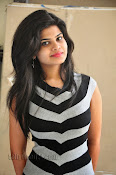 Alekhya Photos at Swiss Raja Press Meet-thumbnail-14