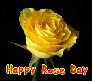 Happy+Rose+Day+Pictures+2013+(1)