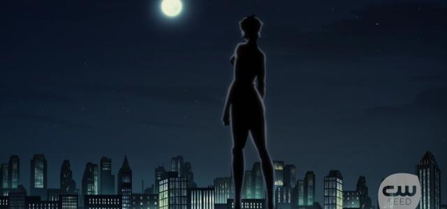 Uma última imagem da série: Vixen está no topo de um prédio, de costas: só sua silhueta escura pode ser vista. É noite e a lua cheia brilha no céu. Debaixo do azul escuro estrelado, os prédios iluminados da cidade de Detroit se expandem ao horizonte. Vixen olha para eles com os punhos cerrados.