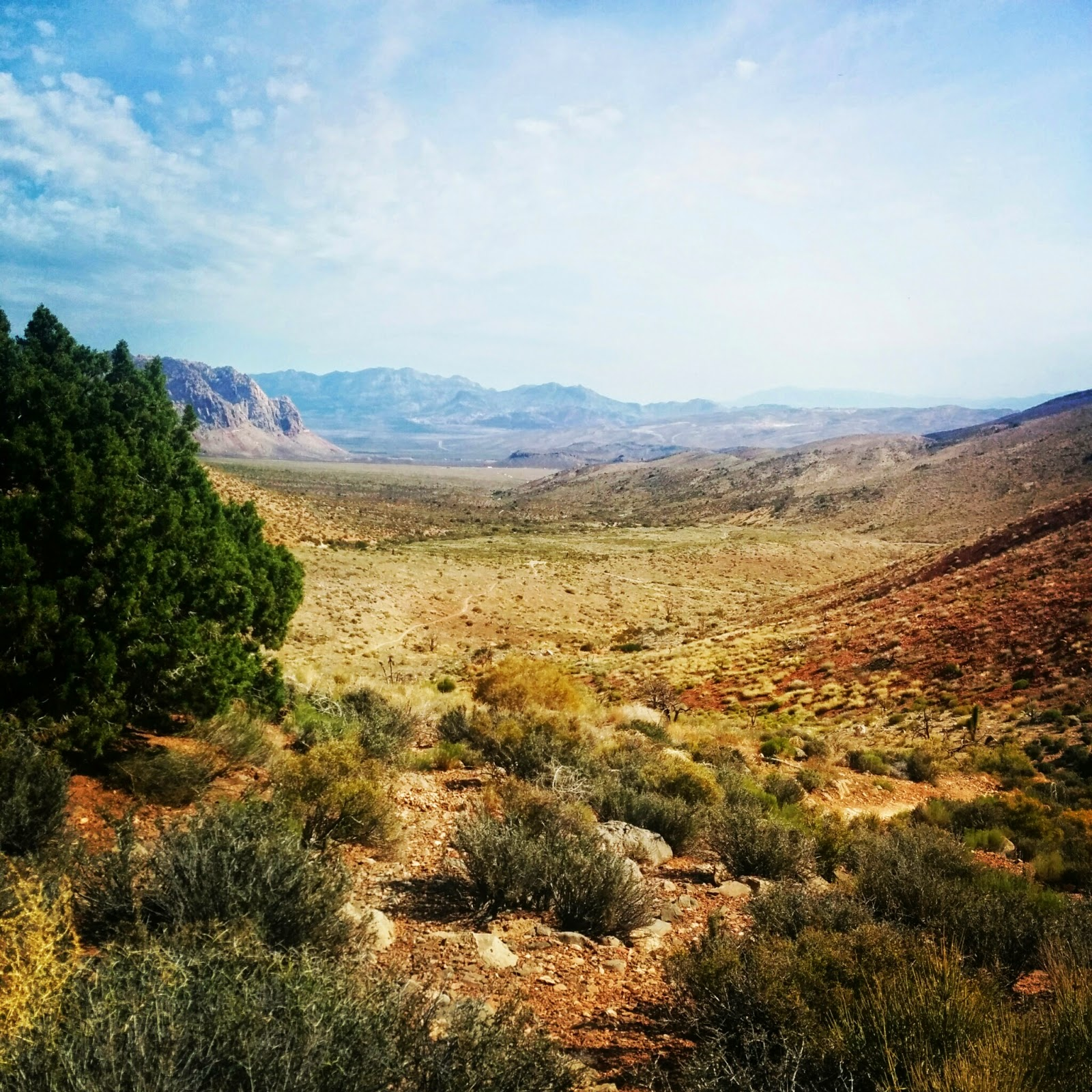 Trail Running | Las Vegas, NV