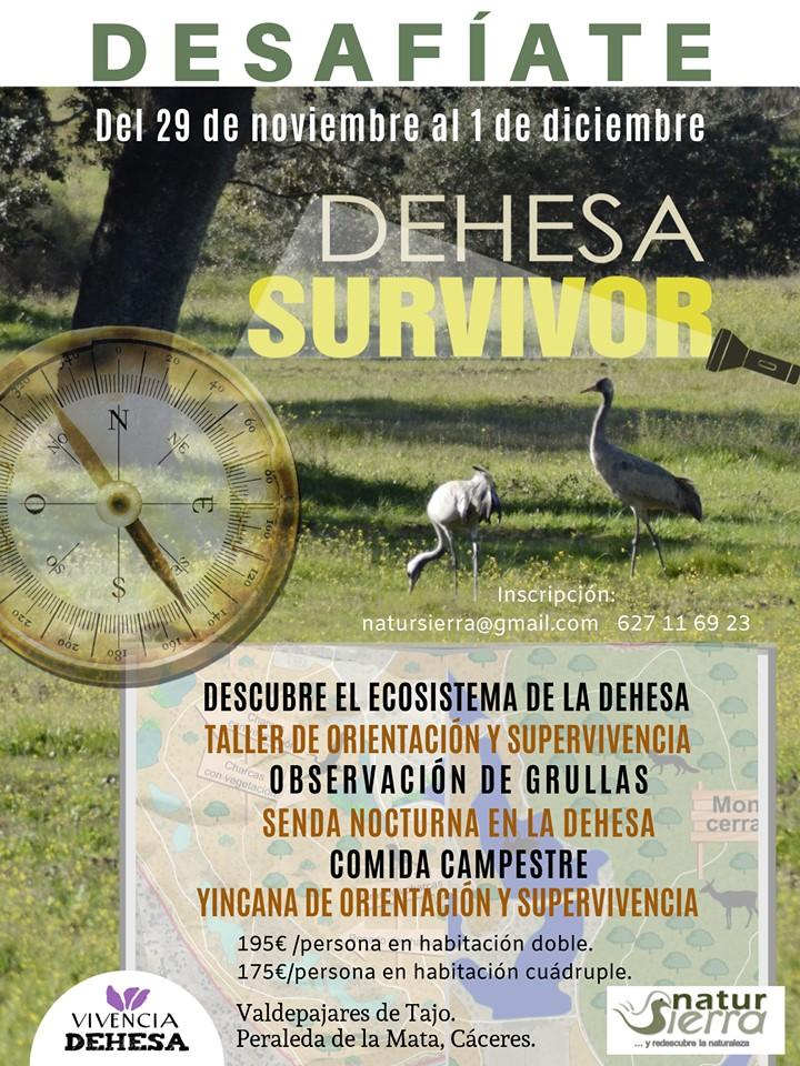 DEHESA SURVIVOR