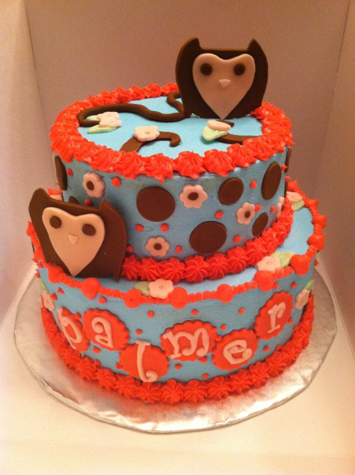 Sweet Treats By Susan Owl Baby Shower Cake