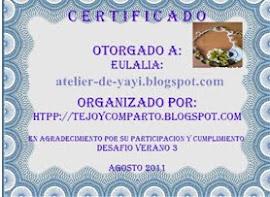 CERTIFICADO DE PARTICIPACION DESAFIO DE VERANO