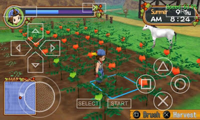 Foranimeku - harvest moon hero of leaf valley