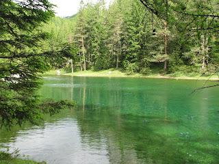 Blick über den Grünen See