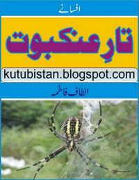 Taar-e-Ankaboot Novel