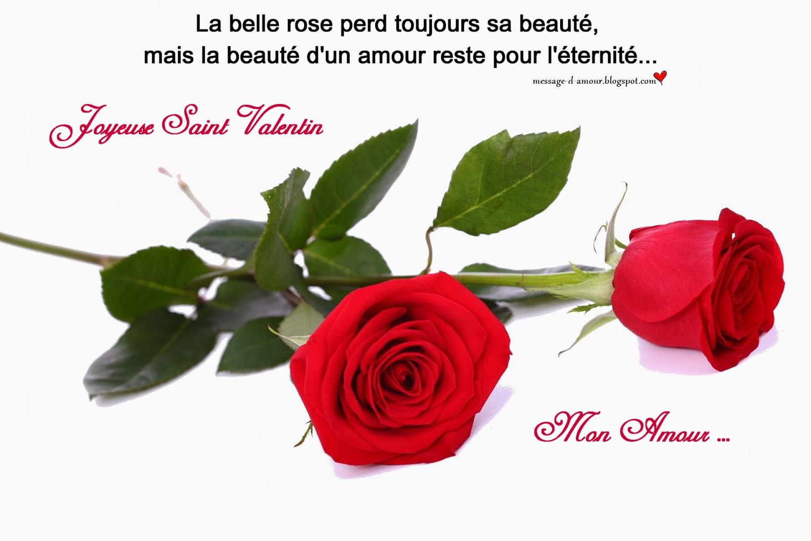 Cartes de saint valentin message d 39 amour for Livraison fleurs avec message