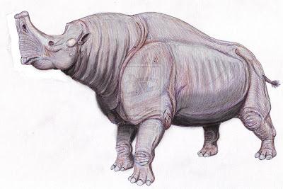 Perissodactyla fosil Embolotherium