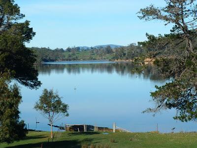 Парк в Австралии Остров Тасмания,  фото, отзывы