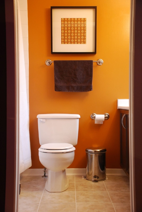 Decorating Idea Small Bathroom Design