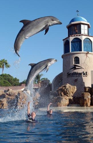 6 Taman Bermain Terbaik Dunia - www.SurgaBerita.com