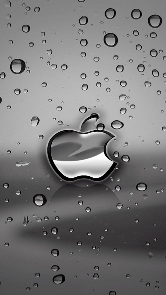 IPhone 5s Wallpaper Apple Classic 13