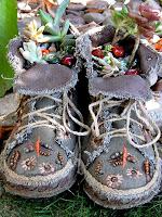 Саксии от платнени обувки със сухолюбиви цветя