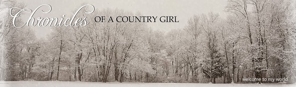 Chronicles of a Country Girl