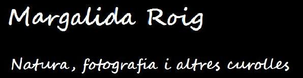 Margalida Roig