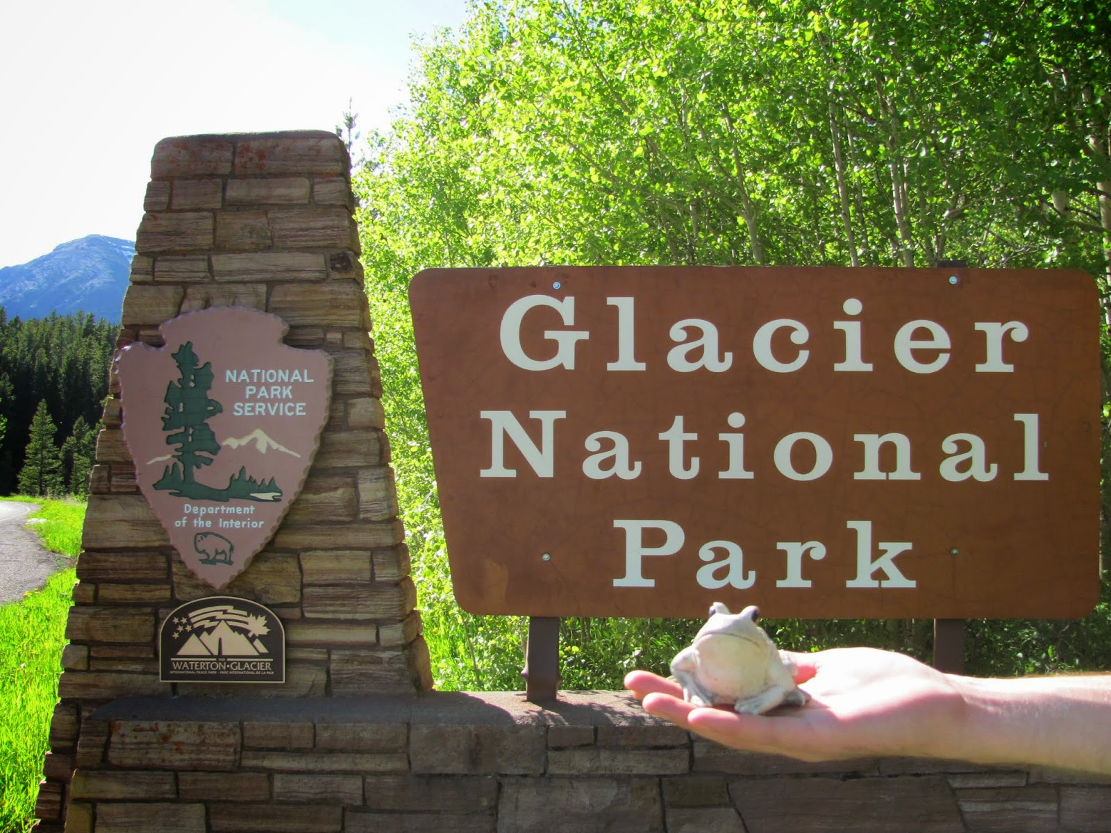 Frog poses with the Glacier National Park welcome sign