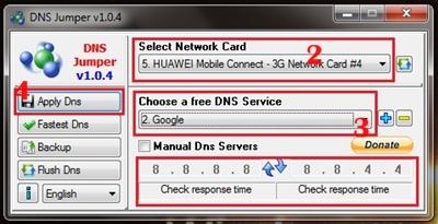 anda. Dan pada Choose a free DNS Service kita gunakan saja DNS Google