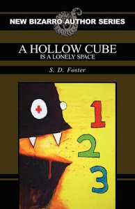 """A Hollow Cube is a Lonely Space"" by S.D. Foster (paperback/Kindle/Nook)"