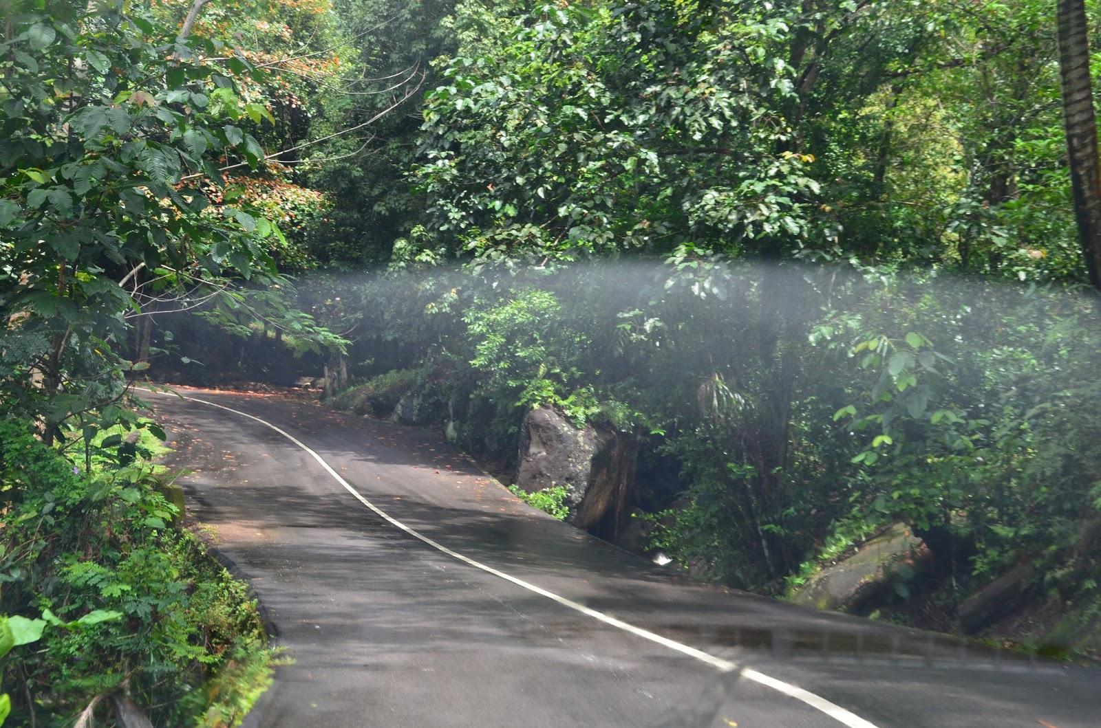 Route dans le Morne seychellois