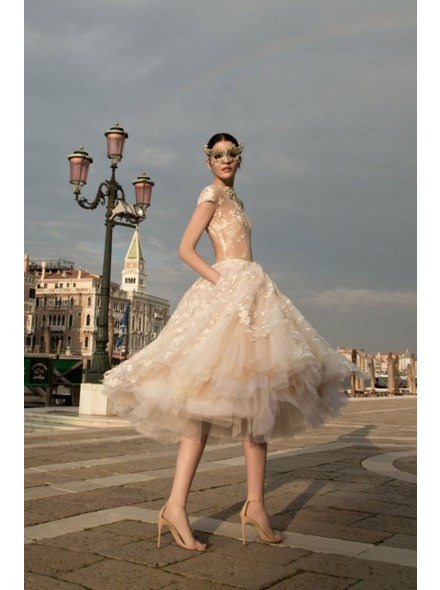 champagne organza tea length dress