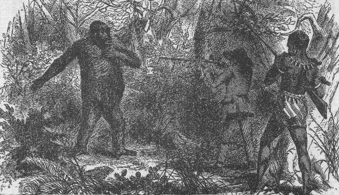 http://en.wikipedia.org/wiki/File:French_explorer_Paul_du_Chaillu_at_close_quarters_with_a_gorilla.jpg