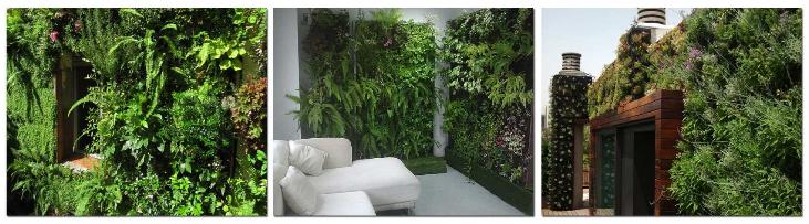 Curso de jardiner a vertical modular en madrid jardines for Modulo jardin vertical