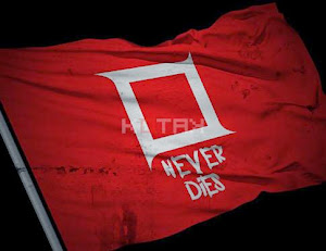 Kotak - Never Dies