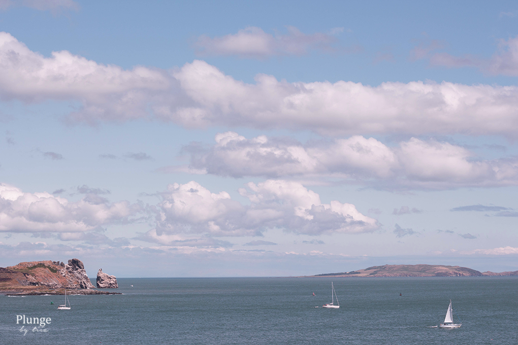 Sailing boats in Howth