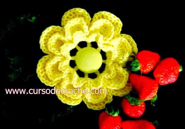 dvd em croche 5 volumes de flores em aprender croche com edinir-croche com frete gratis na loja curso de croche