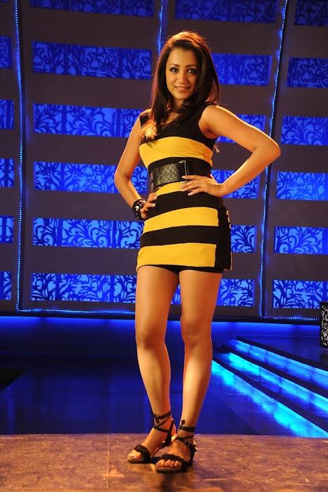 trisha new in dammu movie actress pics