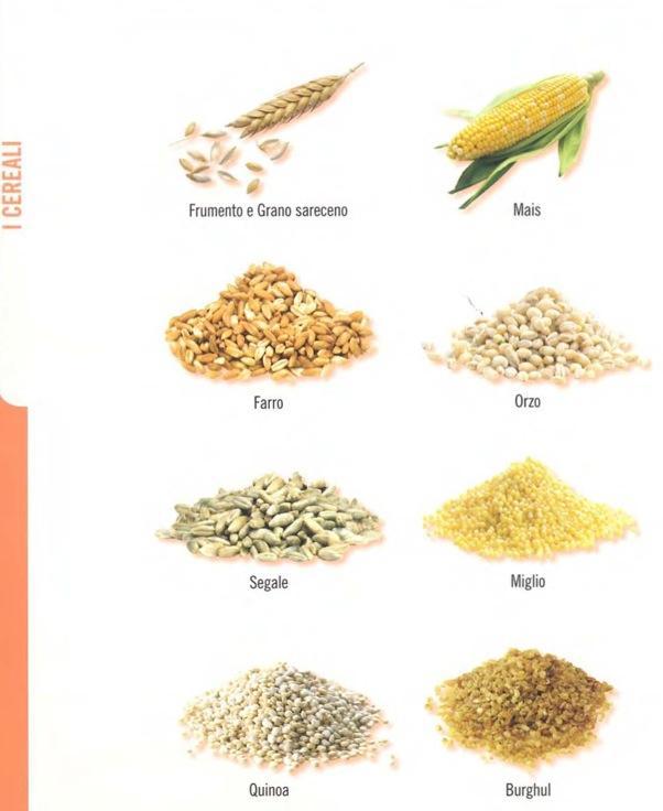 VeganChef88: I cereali