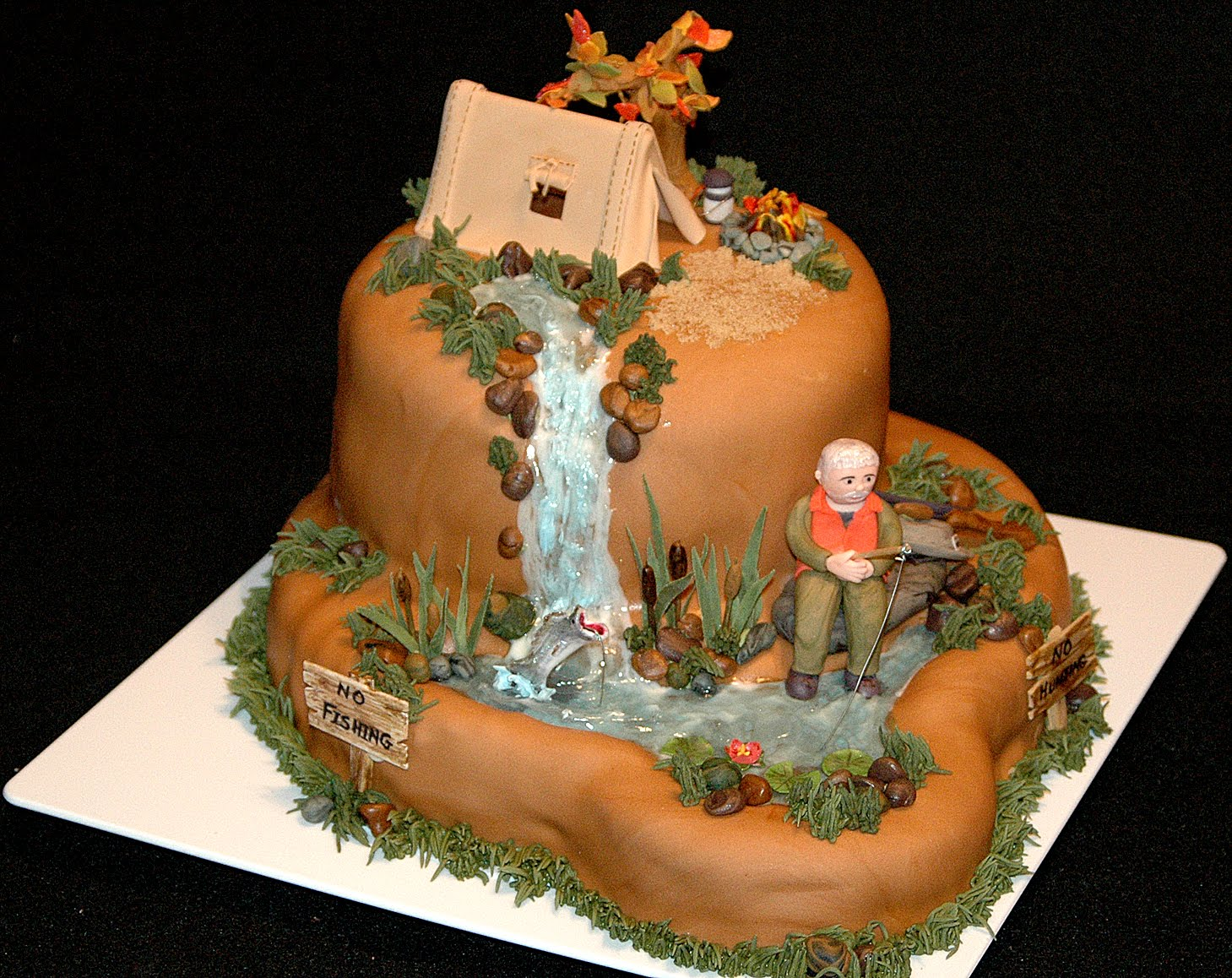 Birthday Cake Design Sites : Camping cake ideas Pinterest