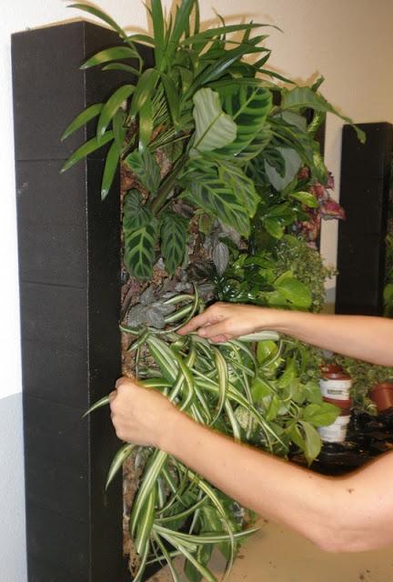 Curso intensivo en jardines verticales jardines for Jardines verticales pdf