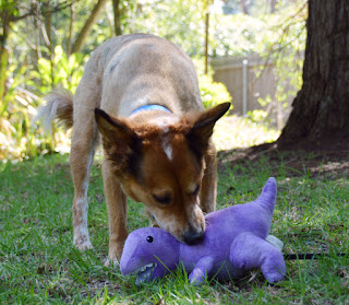 Stuffed purple dinosaur dog toy