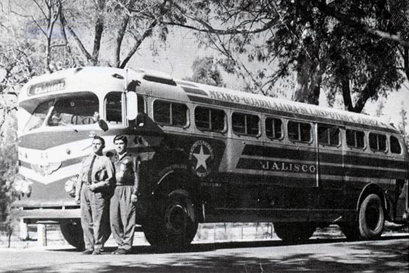 Autobuses de dina fotografias 16