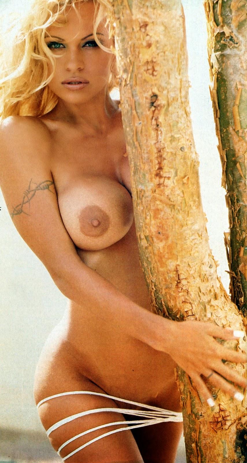 deutsche bilder nackte pussys bider gestohlen