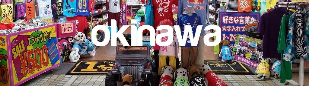 http://s208.photobucket.com/user/ihcahieh/library/KYUSHU%20-%20Okinawa