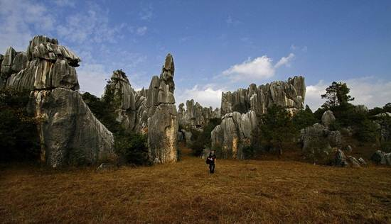 Stone-Forrest-National-Park-Yunnan-China
