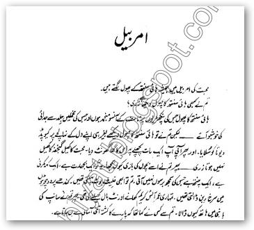 Free urdu digests amarbail novel by bano qudsia pdf for Bano qudsia poetry