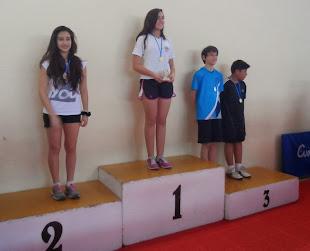Primera D1 - 3era etapa 2013
