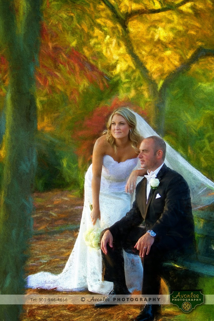 Painted, artwork, Congressional CC, Bethesda Maryland, Bethesda Photographer, Washington DC Photographer