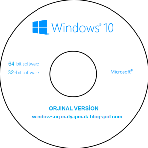 Windows 10 Pro 32 Bit Türkçe MSDN Final Full İndir