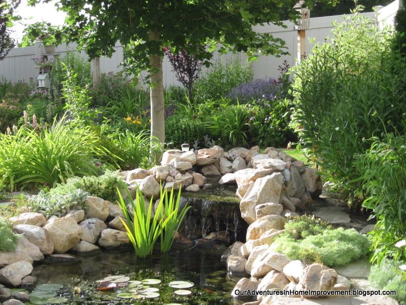 Our Adventures In Home Improvement I Love June In The Garden