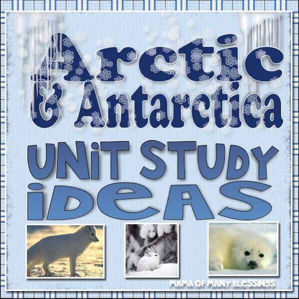 Antarctic Arts And Crafts