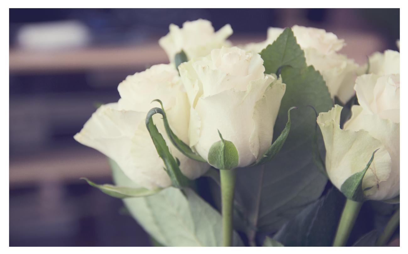 White Roses Bouquet Tumblr