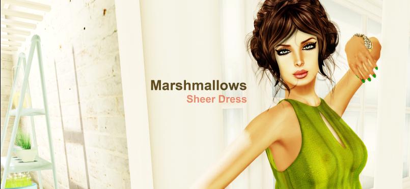 Marshmallows Summer Sheer Dress