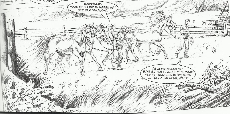 De Bob Evers Strip De Verdronken Paarden Van Ameland